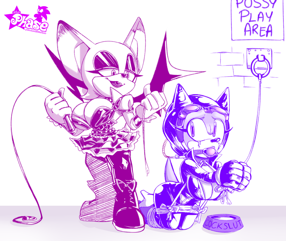x and rouge amy sonic Watch dogs 2